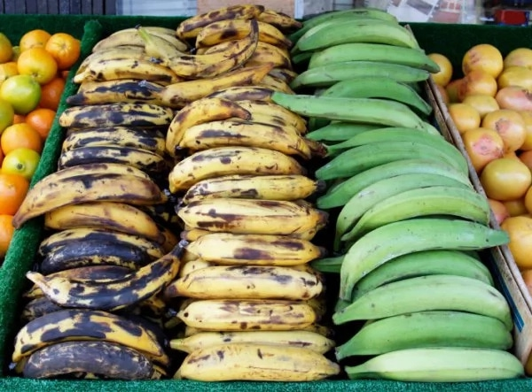Sample Proposal for Plantain Supply to Eatries/Hotels