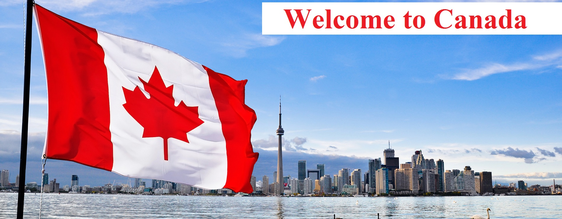 How To Apply For Canada Student Visa From Nigeria